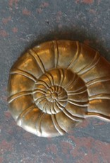 Brass Wall Hanging Shells