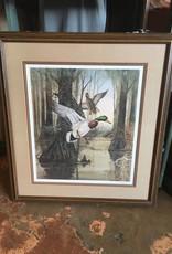 J R Mcdonald Framed Print