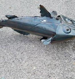 Medium Cat Fish