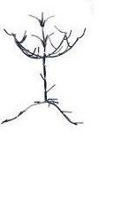 Jewelry Iron Tree