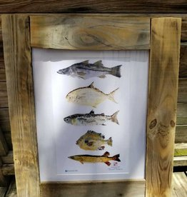 Reclaimed Wood Frame Multi Fish Painting