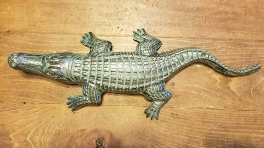 Iron Crocodile