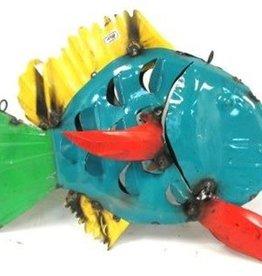 RCY Fish 12x17