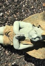 Angel Boy Praying