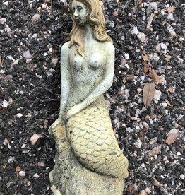 Small Mermaid