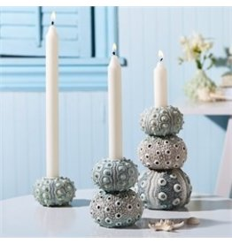 Sea Urchin Large Tapered Candle Holder