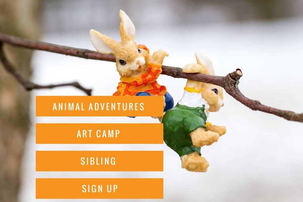 Animal Art Camp: Sibling #1 Sign Up.