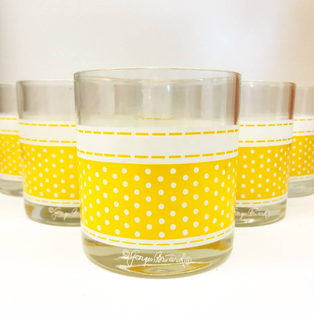 George Briard Double Old Fashioned Glass Set of 7
