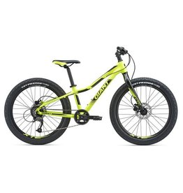 Giant XTC Jr 24+ Satin Yellow/Black