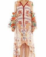 ARATTA THE SURREAL DREAMER DRESS