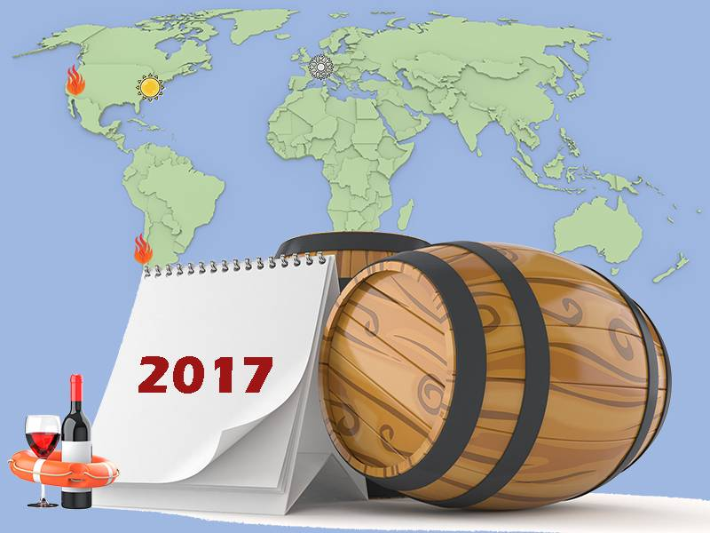 The Year in Wine