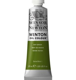 WINSOR NEWTON WINTON OIL COLOUR SAP GREEN 37ml