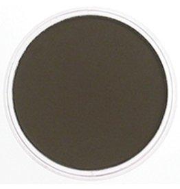 Pan Pastel PAN PASTEL RAW UMBER SHADE 780.3