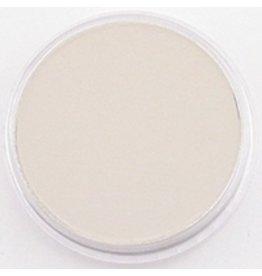 Pan Pastel PAN PASTEL RAW UMBER TINT 780.8