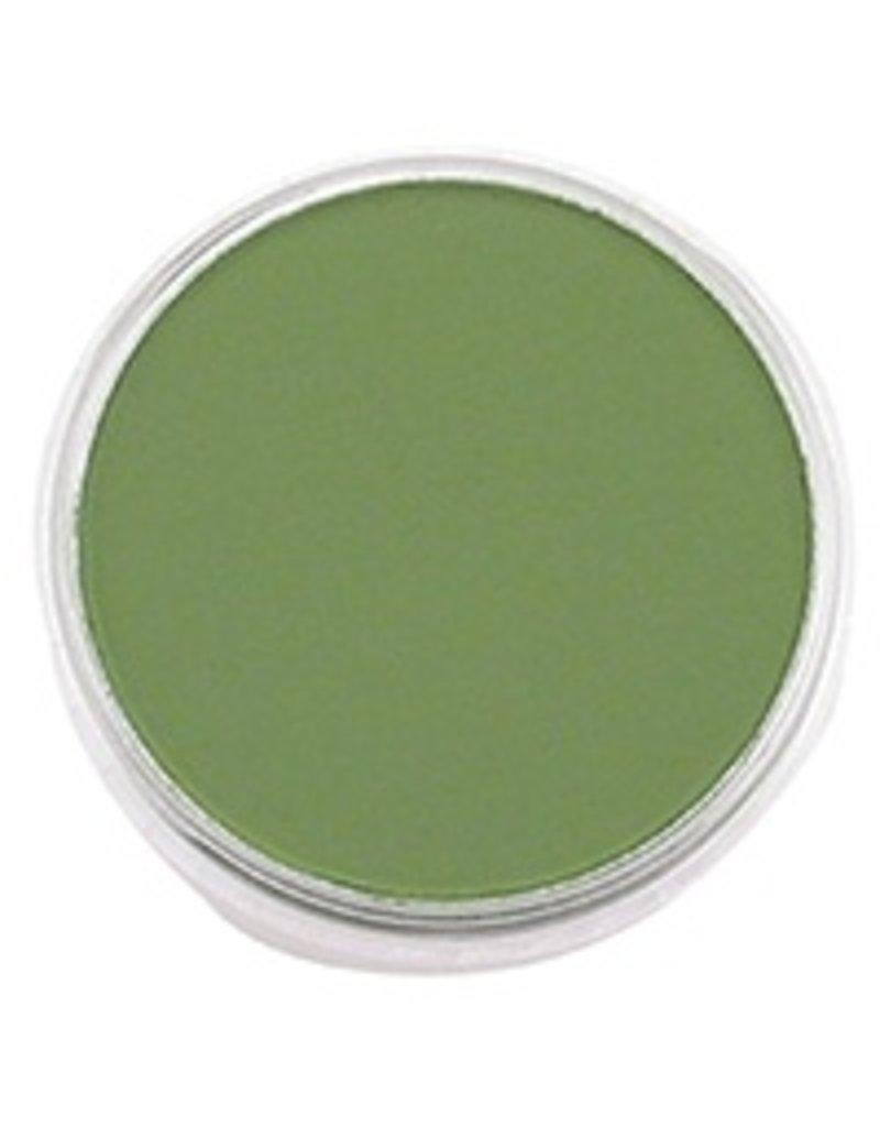 Pan Pastel PAN PASTEL CHROME OXIDE GREEN 660.5