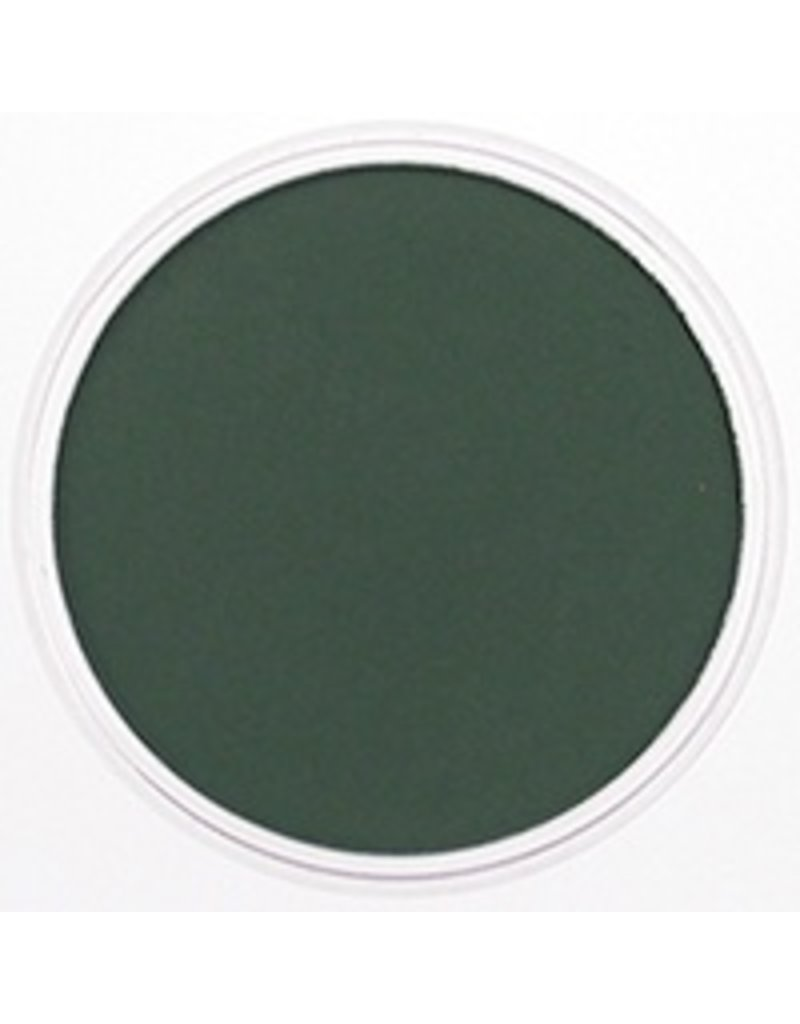 Pan Pastel PAN PASTEL PERMANENT GREEN EXTRA DARK 640.1