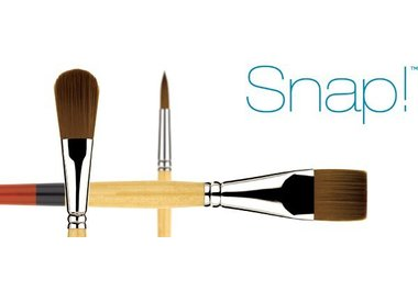 Princeton Snap! 9650 Brushes