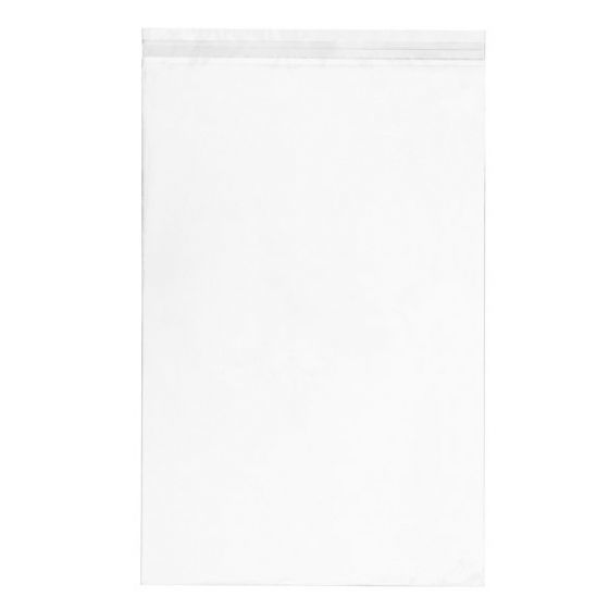 CLEARBAGS CLEAR BAG 11X17 EA