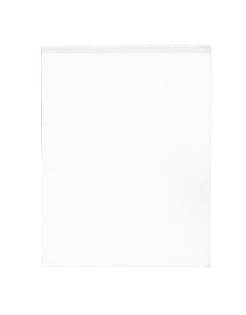 CLEARBAGS CLEAR BAG 16X20 EA