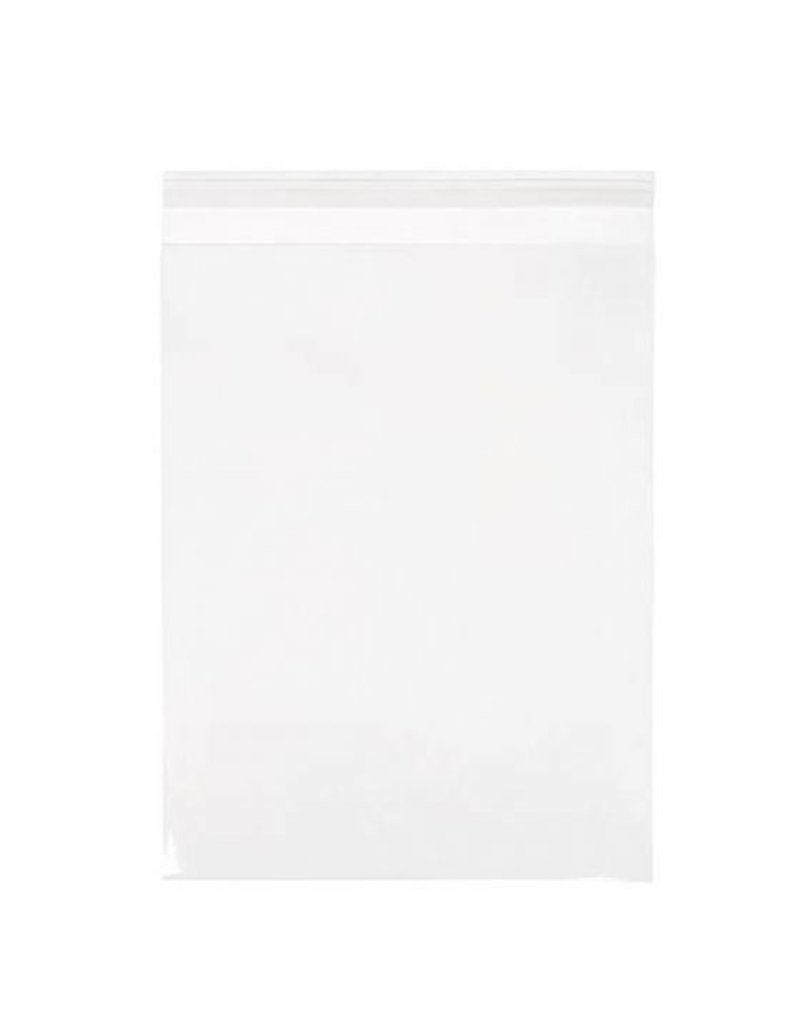 CLEARBAGS CLEAR BAG 9X12 EA