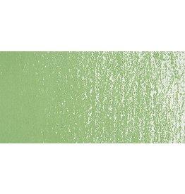 Prismacolor NUPASTEL 408 FERN GREEN