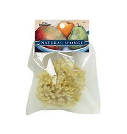 PRO ART PRO ART NATURAL SEA WOOL SPONGE SMALL  S04