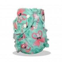 AppleCheeks AppleCheeks Swim Diaper (Patterned)