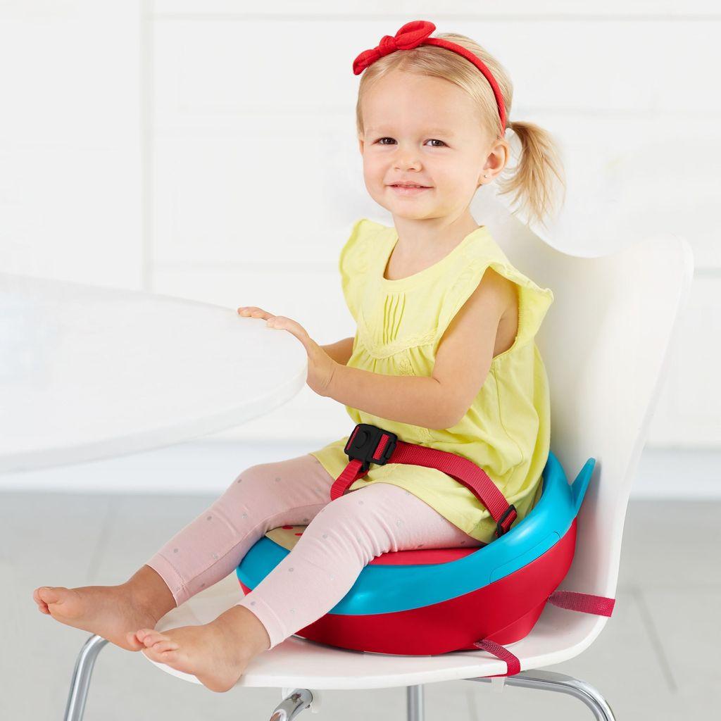 Skip Hop Skip Hop Booster Seats