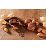 Milk Chocolate Almond Squares (12 oz box)