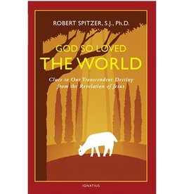 God So Loved the World: Clues to Our Transcendent Destiny from the Revelation of Jesus