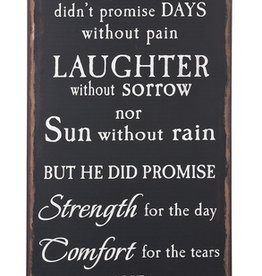 Plaque: God Didn't Promise Days Without Pain