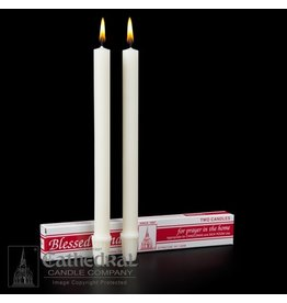 Cathedral Candle Company Candlemas 51% Beeswax Medium 6'S (25/32 x 10-1/4 S.F.E.)