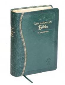 ST. JOSEPH N.A.B. (GIFT - MED - GRN)