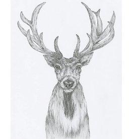 Kayla Walsh Kayla Walsh- Illustrations Series