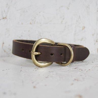 Canine Collar