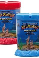 Ocean Zoo Sea Monkeys