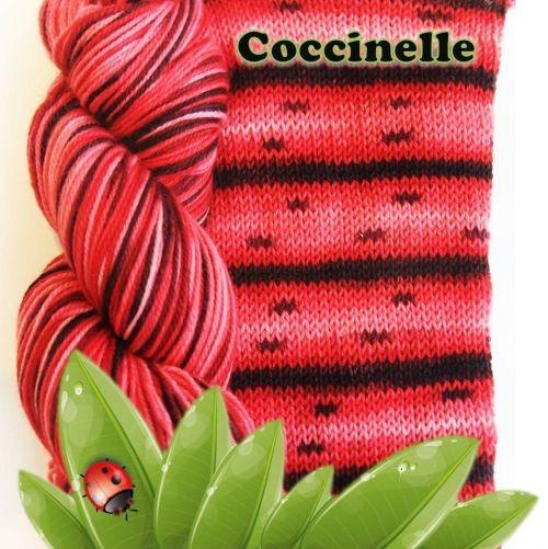 Biscotte & Cie Bis-Sock, Coccinelle