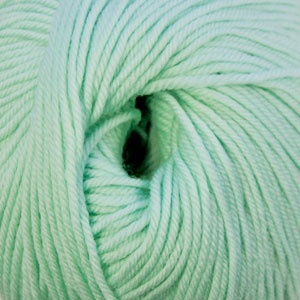 Cascade Yarns S/220 Superwash, Mint Color 1942