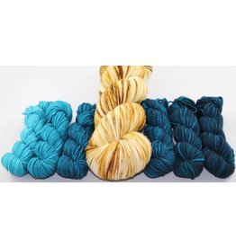 Knitted Wit FLOTUS Gradient Kits, Sensible Shoes (Eleanor Roosevelt)