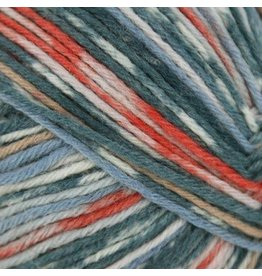 Schachenmayr Regia 6-ply, Arne and Carlos Design Line, Summer Night Color 3657