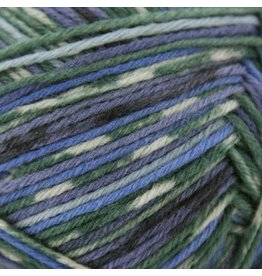 Schachenmayr Regia 6-ply, Arne and Carlos Design Line, Winter Night Color 3658