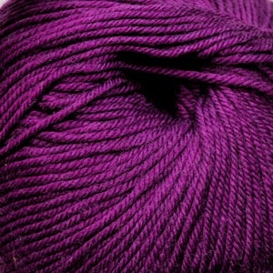 Cascade Yarns S/220 Superwash, Plum Crazy Color 882