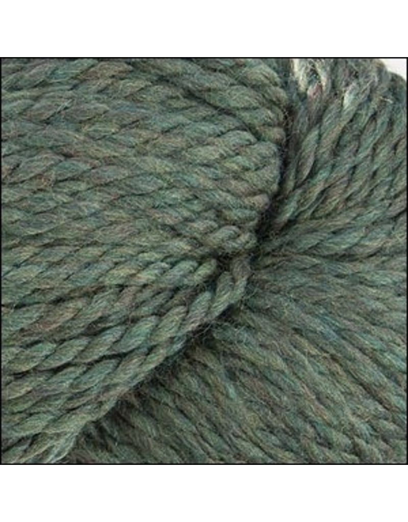 Cascade Yarns 128 Superwash, Lichen Color 867