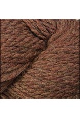 Cascade Yarns 128 Superwash, Pumpkin Spice Color 1920