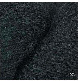 Cascade Yarns 220, Jet Color 4002