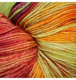 Dragonfly Fibers Djinni Sock, Ode to Sock Summit