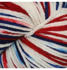 Knitted Wit Superwash Merino Worsted, Team USA