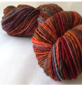 Spincycle Yarns Independence, Rusted Rainbow