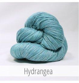 The Fibre Company Meadow, Hydrangea