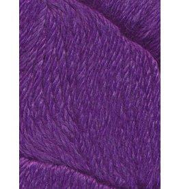 Stargazer, Iris Color 23
